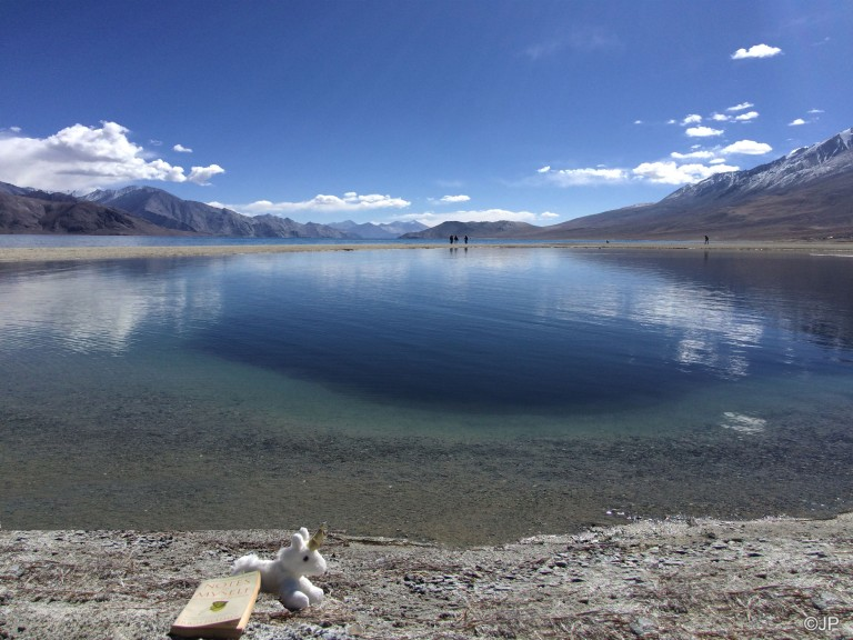Reading by Pangong Tso